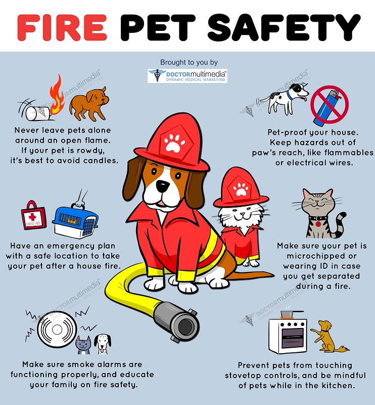 Fire Safety and Your Pets